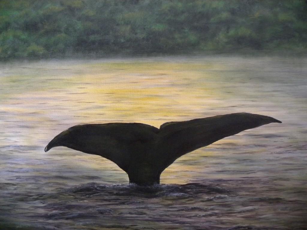 DSCN1548 whale web page edit